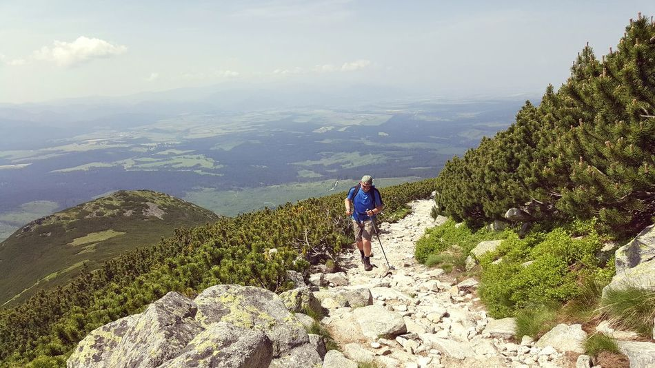 Summer 2016 Vacation Summertime Mountain View Tatra Mountains Taking A Walk Taking A Tour Mountains Mountain Tour Long Trip On The Road To The Top Hard Tour Sport In The Mountain Challenge Stones Alone Nature Photography Pinus Mugo Pinus Forest Hard Working People And Places