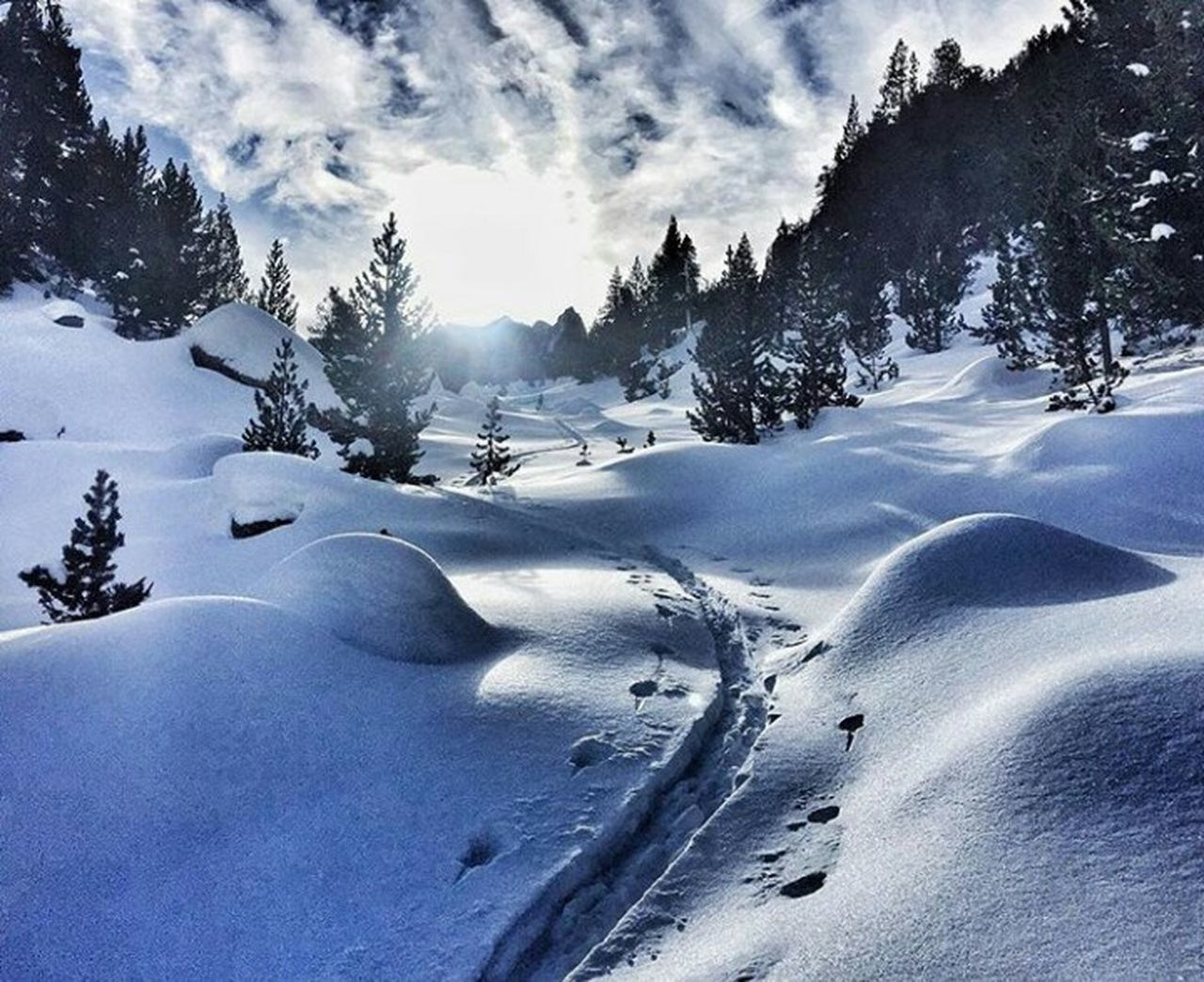 Pyrenees Snow Cold Temperature Landscape Mountain Snowboarding Beauty In Nature Outdoors Tree Scenics Nature Day No People First Eyeem Photo The Week Of Eyeem Saturday Winter Sport Extreme Sports Cloud - Sky Sky