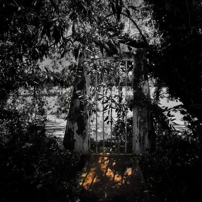 Mysterious door Black & White Blackandwhite Door Gate River