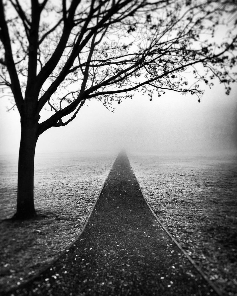 Commute Walk 02/02 Blackandwhite Fog Silhouette Mist Foggy London Path Richmond Upon Thames Monochrome Misty Bwstreetphotography Black And White