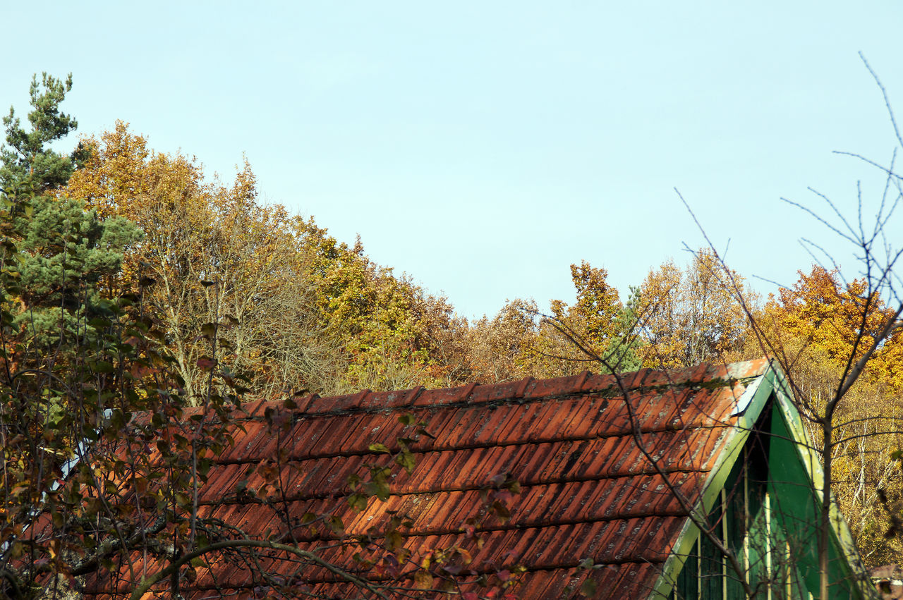 A very old garden house under autumn coloured trees Architecture Autmn Autmn Colors Autumn Light Autumns Coming Garden Indiansummer Old Buildings Wooden House