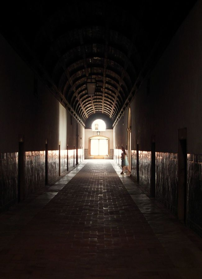 Light Lights Light And Shadow Shadow Shadows Darkness And Light Darkness Fearoftheunknown Fear Fear Of The Dark Fine Del Tunnel Alone Shinning Corridor The End Of The Road  The End Of The Old Hospital Shadows In The Dark Ghost Ghosts Lady