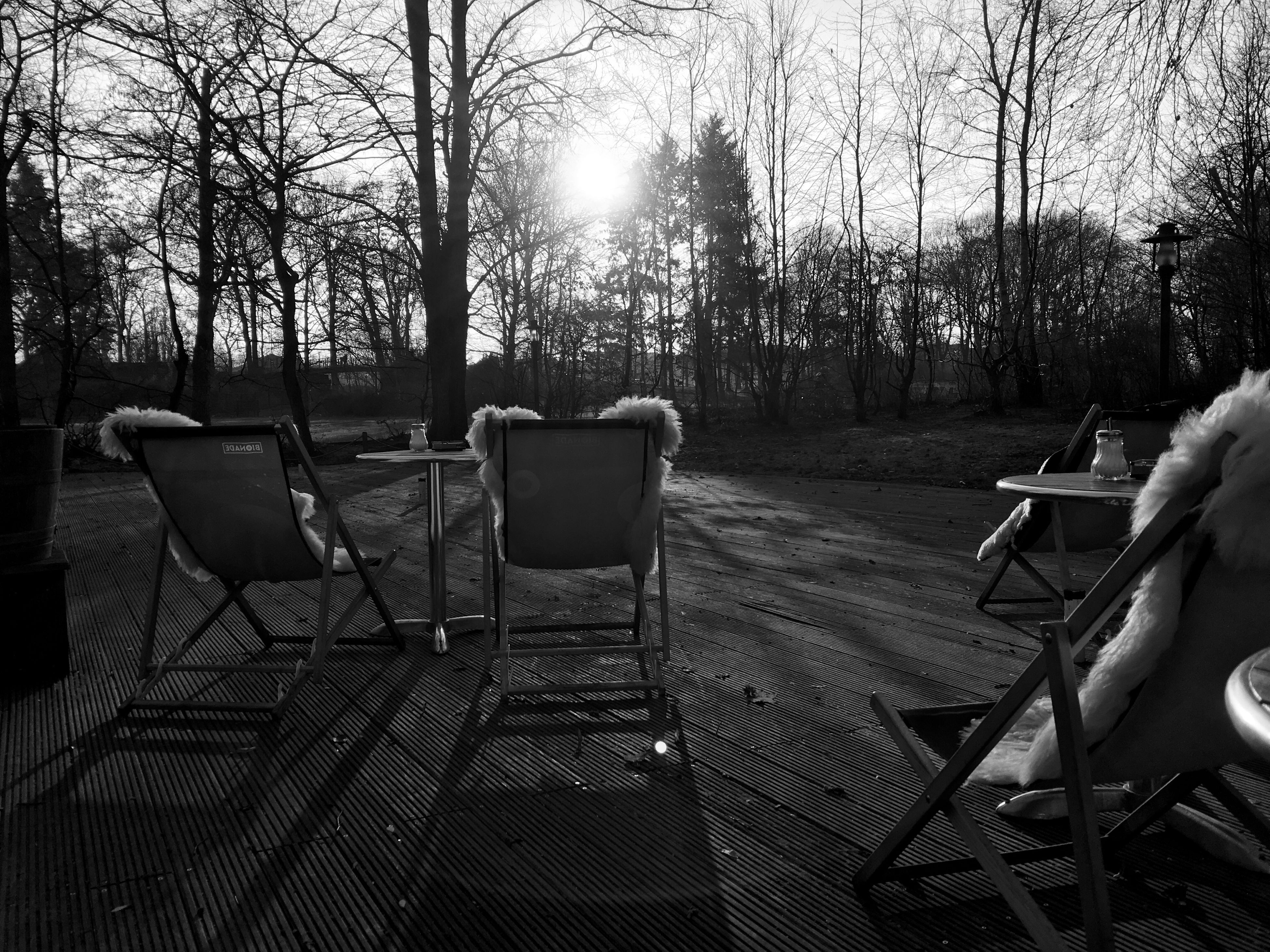 chair, empty, absence, tree, seat, sunlight, bench, relaxation, table, tranquility, park bench, sun, shadow, nature, furniture, sunbeam, day, wood - material, no people, tranquil scene