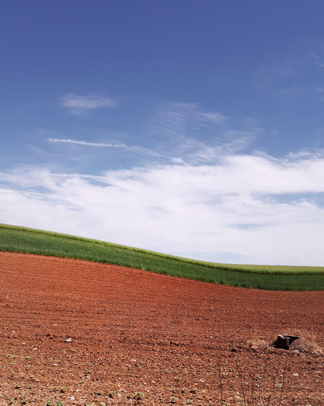 Agriculture Field Rural Scene Crop  Growth Cereal Plant No People Nature Cloud - Sky Outdoors Beauty In Nature Plowed Field Geometry Landscape Landscape_photography Instagramer Umeugram Portugal Alentejo Landscapes Alentejo-Portugal