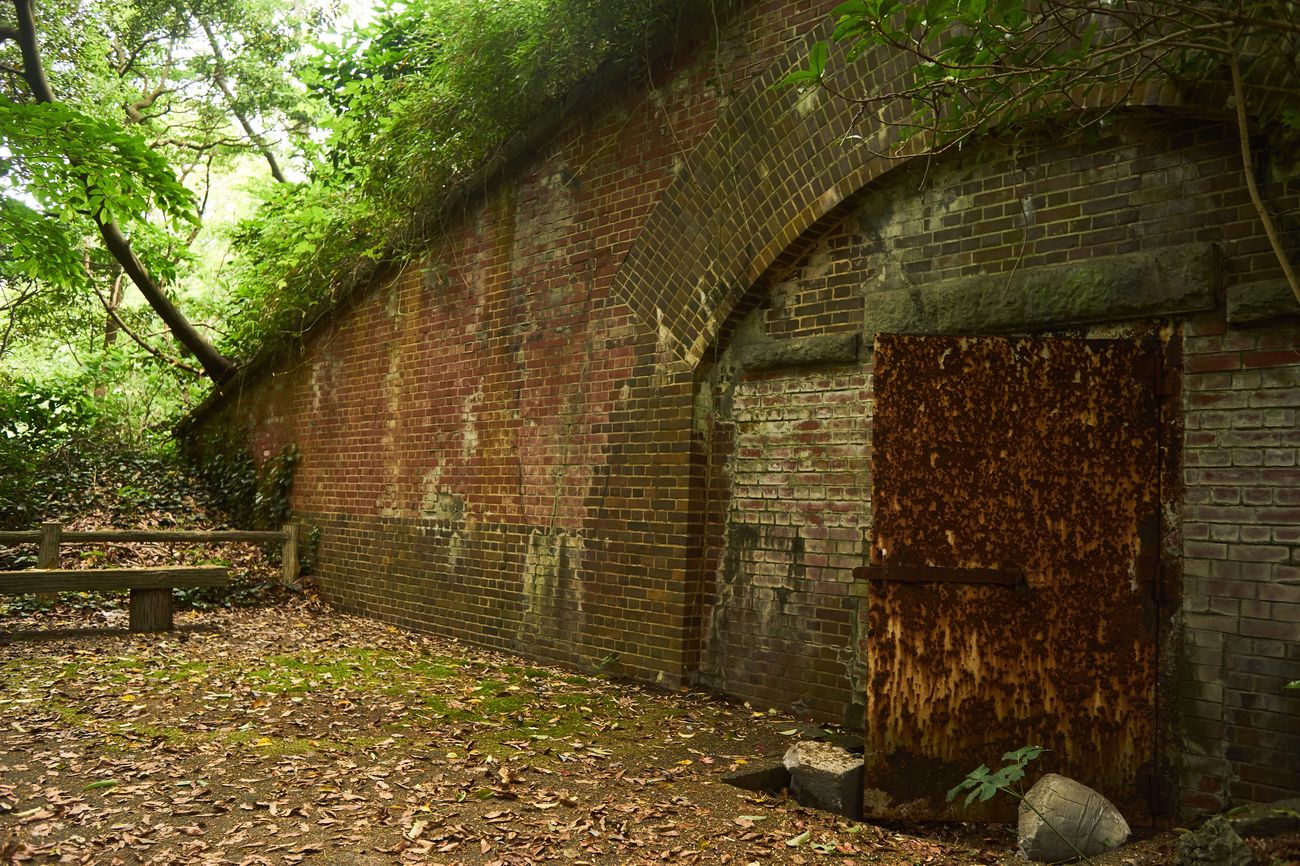 Brick Wall Architecture Built Structure Day No People Outdoors Building Exterior Nature Darkness And Light EyeEm Gallery Architecture_collection Built Structures Rust Old Eyeemphotography EyeEm Best Shots Door Brick Wall Green Color Architecture