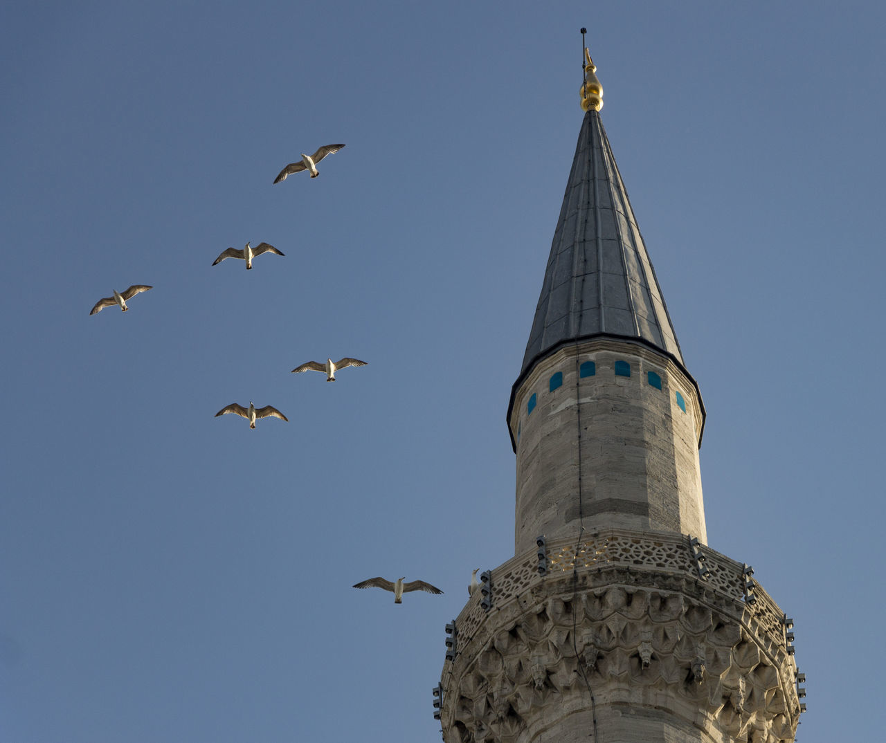 minaret EyeEmNewHere Architecture Bird Blue Sky Building Exterior Built Structure Clear Sky Day Flying Gull Gulls Low Angle View Minaret Minaret Mosque No People Outdoors Sky Spread Wings