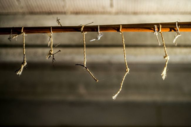 These ropes can look a bit creepy, but they were used to hang grapes for conservation ;-) Abandoned Color Open Edit Vintage Showing Imperfection Ceiling Focus On Foreground Composition Pipeline Ropes Textures And Surfaces