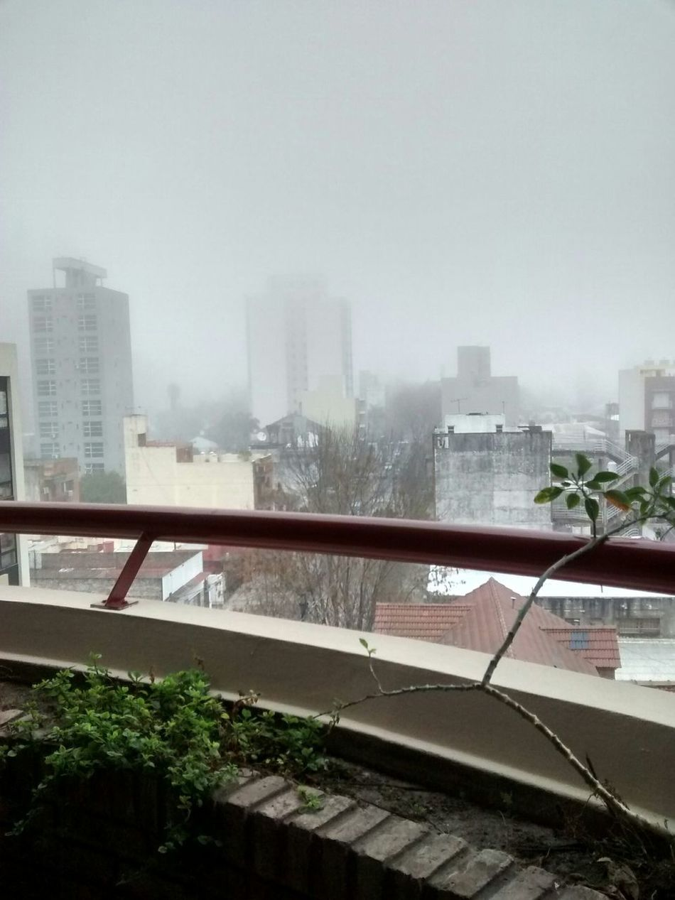 Mañana de neblina. Morning Misty Mornings Invierno Winter Day Trabajando... In Work