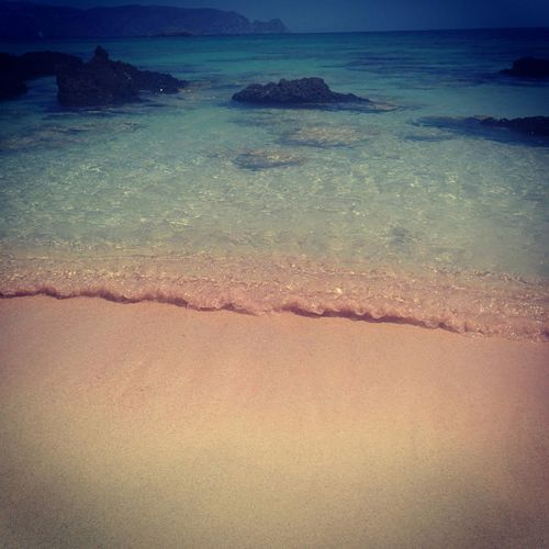 Pinkglow Corals Crystal Clear NatureReserve Protected Areas Crete Greece