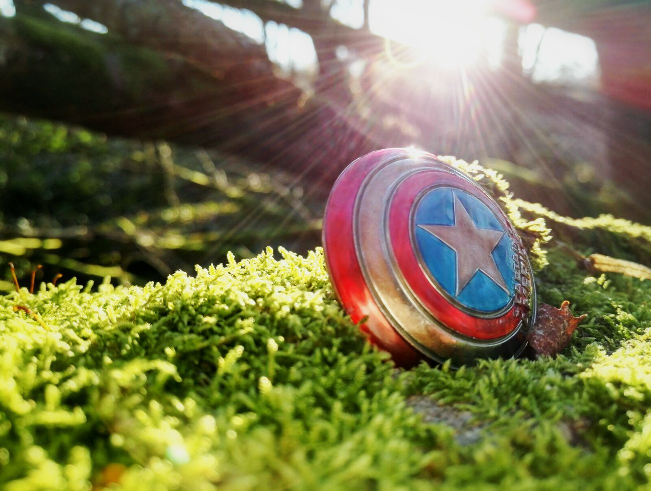Fallen at war Green Color Sunlight Nature No People Grass Plant Tree Captainamerica Avengers HERO American Shield French France Best EyeEm Shot Macro Getting Inspired The KIOMI Collection Getting Creative Soldier Outdoors Symbol Beauty In Nature Inspired