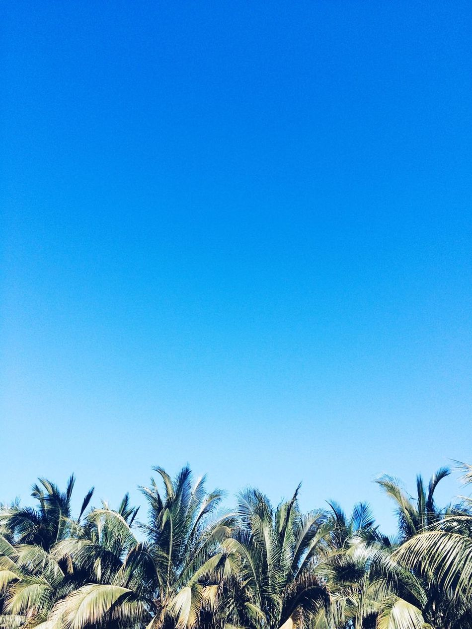 Beautiful stock photos of mexico, Beauty In Nature, Blue, Clear Sky, Day