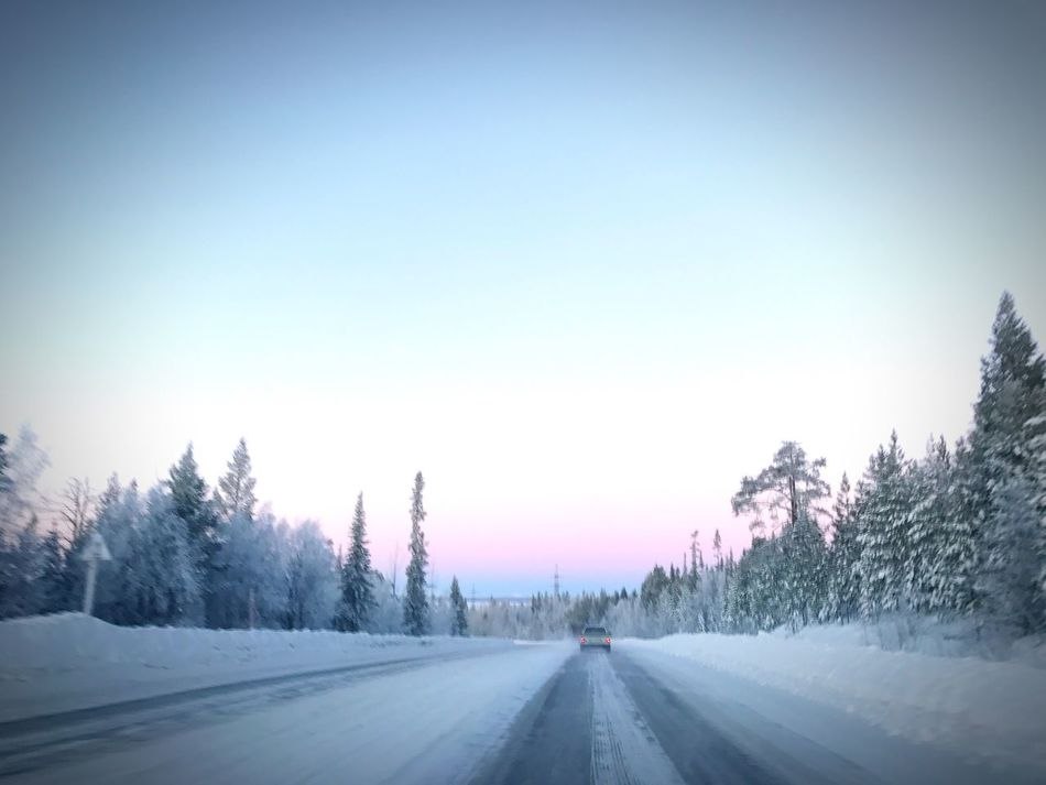 Северный Рай Winter Cold Temperature Snow Clear Sky Tree Nature Road Beauty In Nature The Way Forward First Eyeem Photo