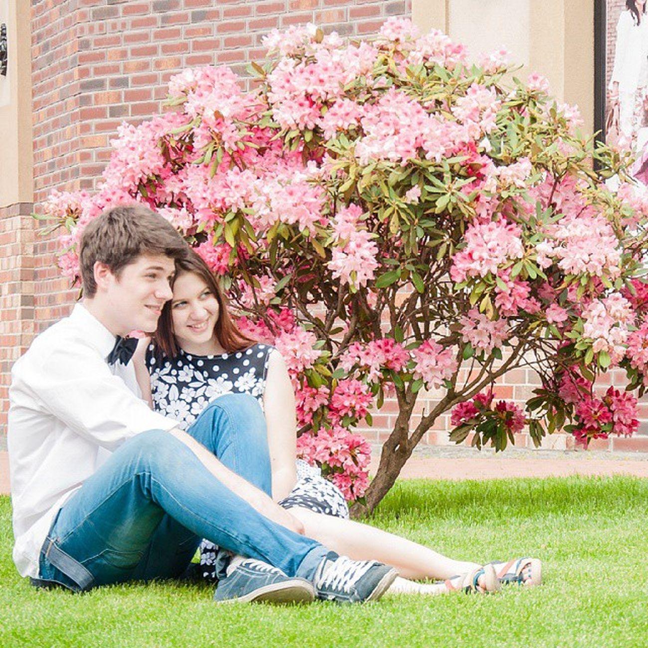 Spring My Love влюбленные весна мой