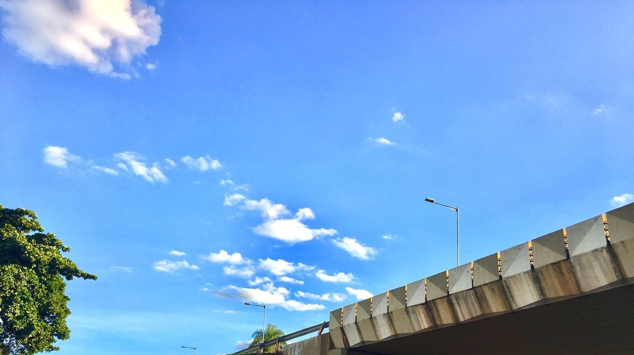 Low Angle View Architecture Built Structure Sky Day Building Exterior Cloud - Sky Outdoors No People Blue Bird Animal Themes Popular EyeEm Best Shots First Eyeem Photo Popular Photos Best Photos Exceptional Photography