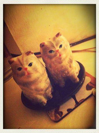 Ceramic salt & pepper shaker cats = top Christmas gift.