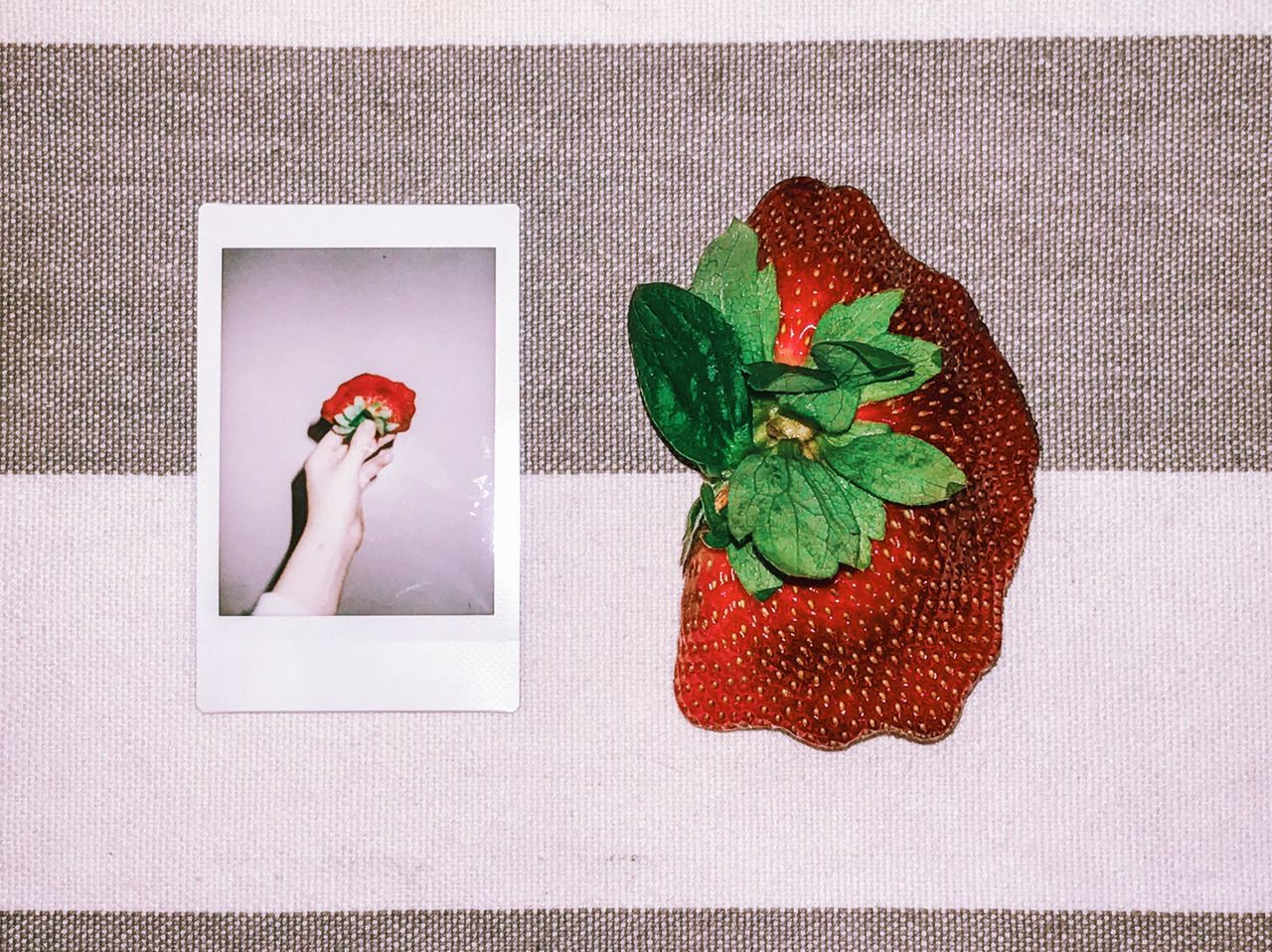 day 24 (shhh, I forgot 23) - the greatest strawberry I've ever seen 🍓👀 Instant Photo A Day Red High Angle View Healthy Eating No People Indoors  Green Color Freshness Close-up Day Film Photography Strawberry Fruit Healthy Food Fruits Red