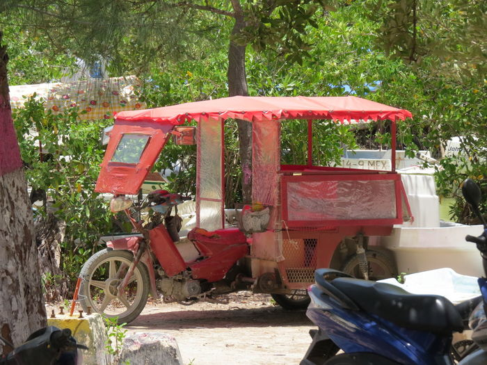 Central America Commercial Land Vehicle Land Vehicle Local Transport Mexico Mode Of Transport Transportation Travel Like A Local Travel The Work