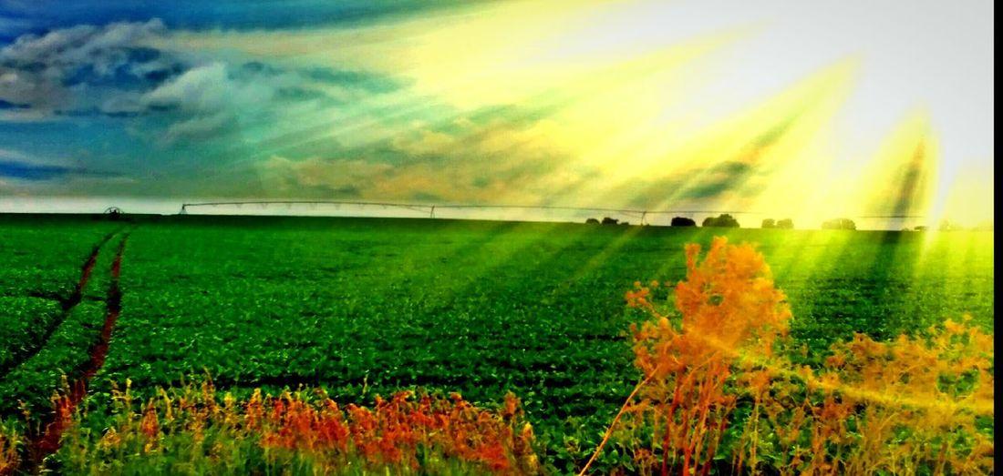 Farmcountry Middleofnowhere Roadsidephotography Kansas Skies Roadside Beauty Horizons And Roadtrips