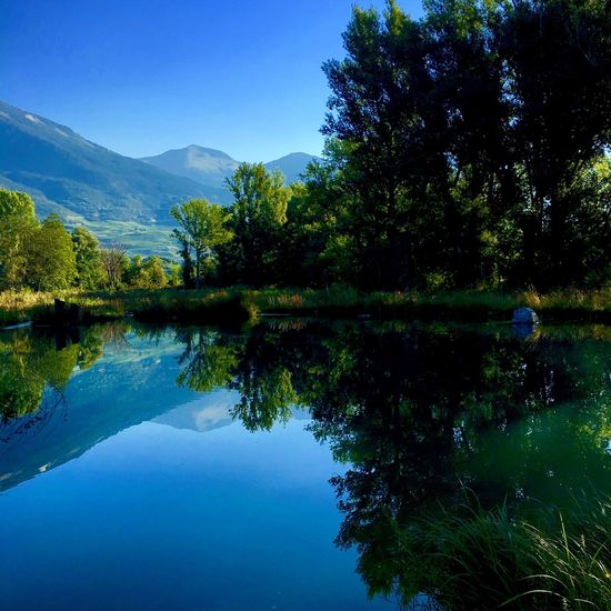 Clear Sky Water Reflection Tree Beauty In Nature Blue Mountain Green Sonne Sun Nature Natur Landscape Baum Outside Relax Landschaft Morgensonne Sunnymorning Reflektion Färben Colors Wallis Schweiz Switzerland