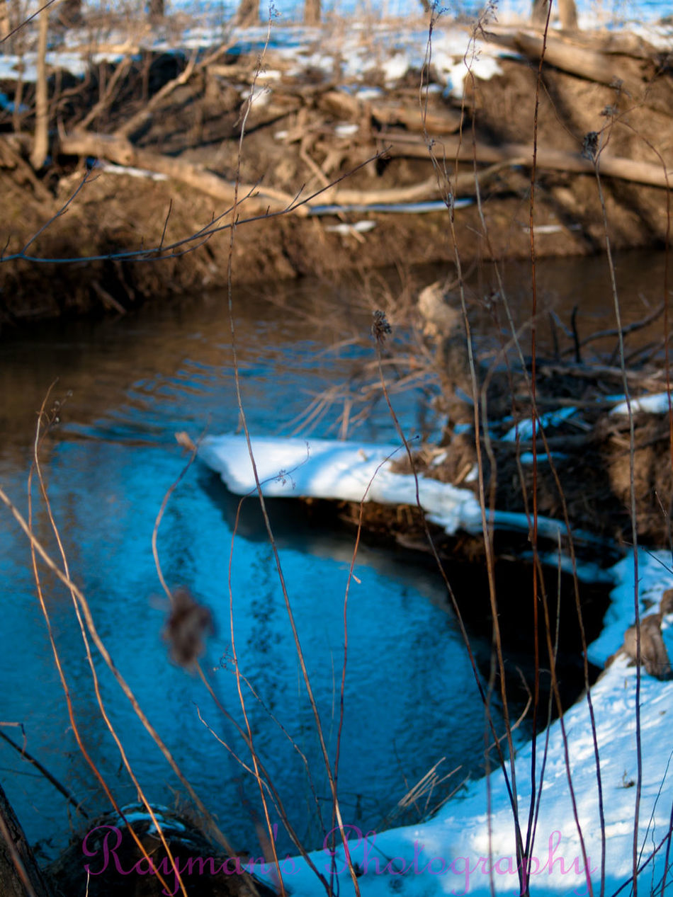 Connected With Nature Naturelovers Enjoying Nature Beauty In Nature Beautiful Nature Nature Photo♡ Photography Photographer Photography Is My Escape From Reality! Nature Photography The Photographer Ilovephotography Olympus Getolympus Creek Winter Down By The Creek Creeks