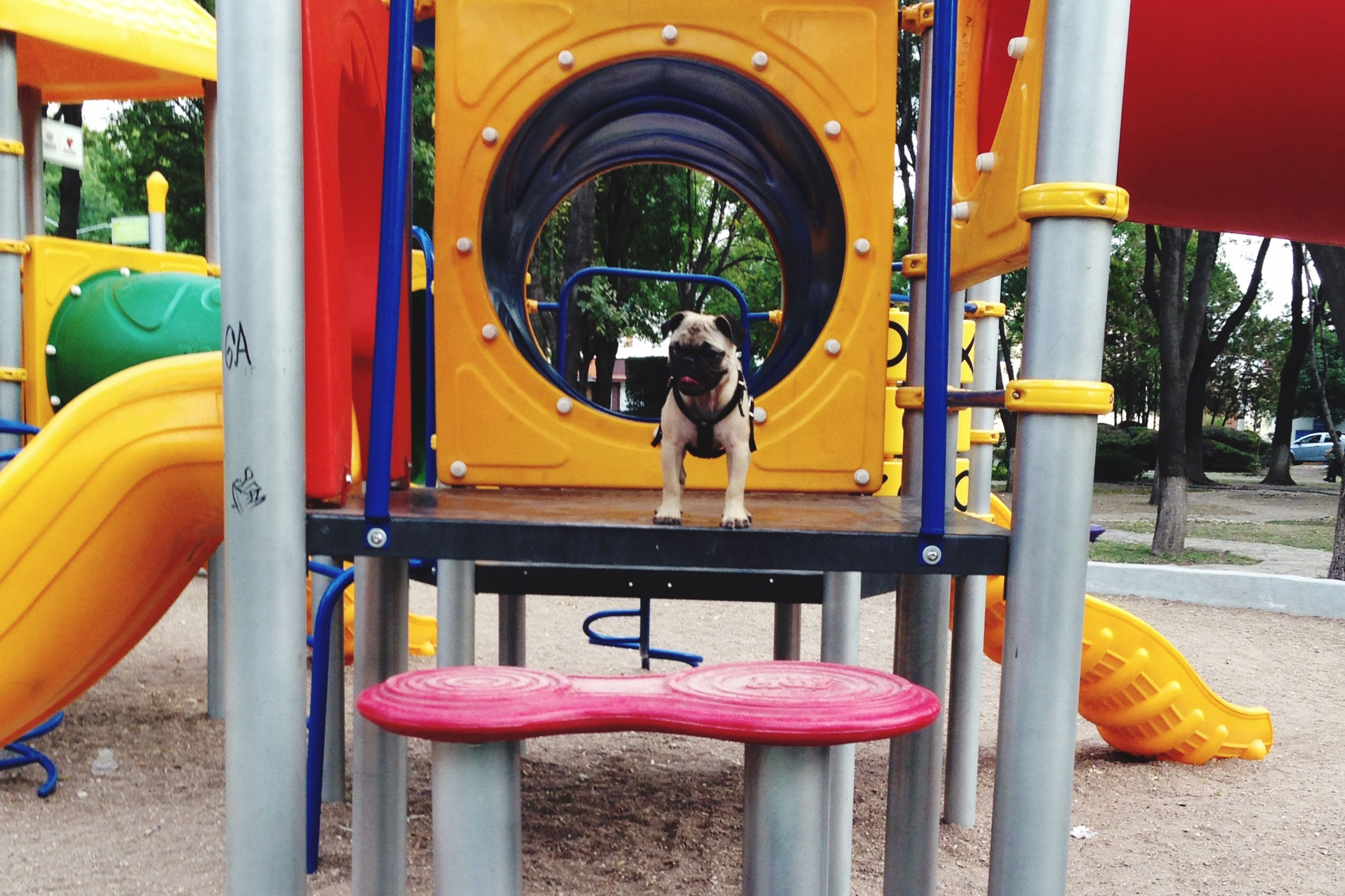 yellow, built structure, playground, red, architecture, arch, tree, day, park - man made space, slide - play equipment, architectural column, childhood, metal, outdoors, orange color, sunlight, chair, protection, multi colored, gate
