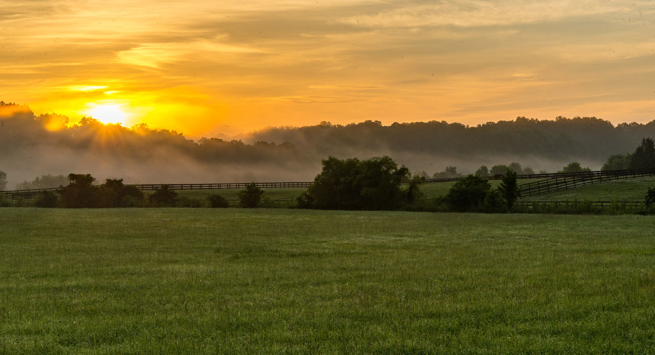 Early morning sunrise! Beauty In Nature Country Countryside Field Hazy  Landscape Nature Nikon Nikonphotography No People Outdoors Rural Scene Scenics Sky Sunrise Sunrise And Clouds Tranquil Scene Tranquility