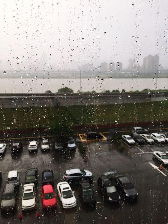 Rain Afternoon