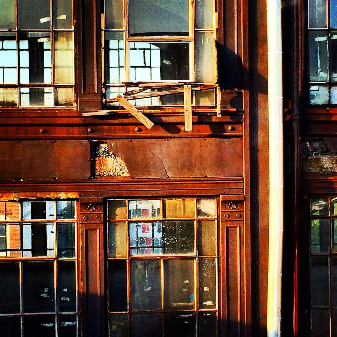 window, architecture, built structure, door, no people, day, building exterior, indoors, open door, animal themes, close-up, bookshelf