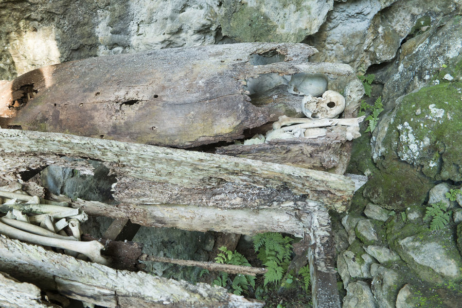 Hundred thousand years hanging coffin and stone graveyard of Toraja People display with human skuls and skeletons in Ke'Te Kesu located at North Toraja. Animal Themes Burial Burial Site Close-up Coffins  Day Dead Death Nature No People Outdoors