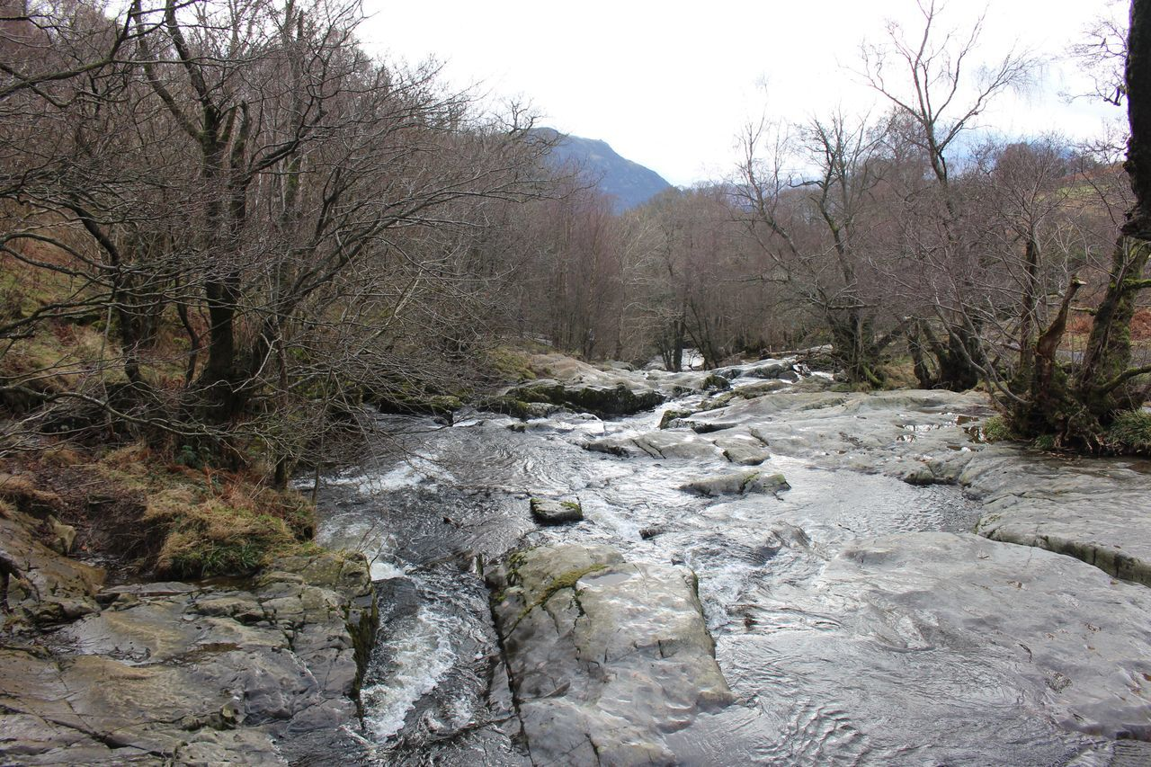 River hike Nature Bare Tree Tree Tranquility Beauty In Nature Hiking Countryside Lakedistrictnationalpark Non-urban Scene Scenics Snow Winter Rock - Object Tranquil Scene No People Outdoors Stream - Flowing Water Water Day Forest Landscape Sky