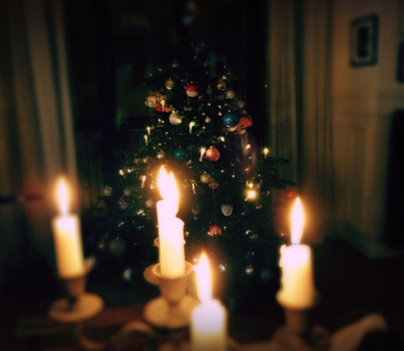 Christmas 2016 Illuminated Flame Burning Glowing Candle Celebration No People Christmas Heat - Temperature Indoors  Tradition Close-up Christmas Tree Night First Eyeem Photo