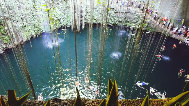Cenote Ik Kil EyeEm Gallery Relaxing Moments Ik Kil Cenotes Merida♡ Mexico Cenote Mérida Yucatán Open Cenote Diving Vivamexico Merida👍 Travel Photography Travel Voyager Hello World ✌ Hola! Wonderful Place DivinePeacePhotography Photooftheday Places You Must To See Nature_collection Beautiful Nature Nature_perfection