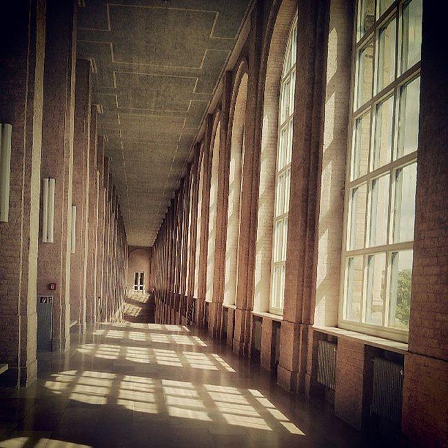 Alte Pinakothek, München Artmuseum Artspace Arthistory Architecture ludwigI vonKlenze building hallway windows