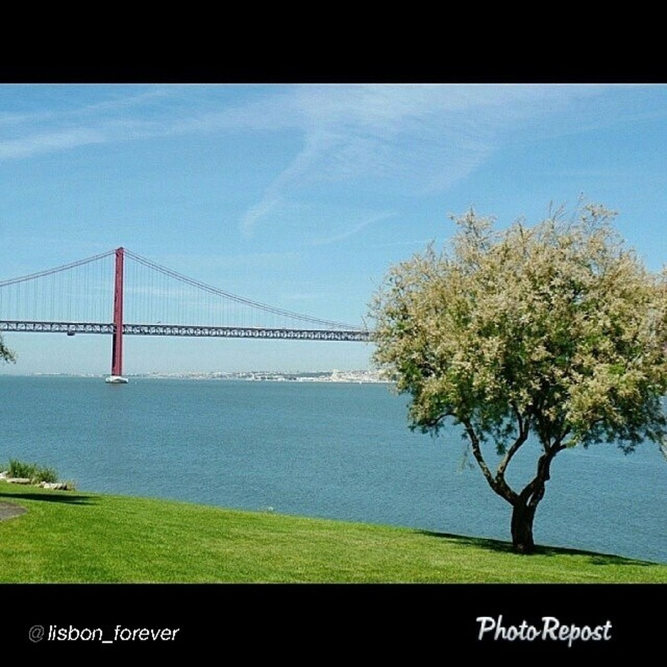 Muito obrigado à @lisbon_forever pelo destaque da minha foto como foto do dia. É um orgulho ser destacado na vossa galeria. Amo Lisboa. Lisbon forever mesmo! Thanks to @ lisbon_forever for the highlight of my photo. I'm proud to be featured in your gallery. Love Lisbon. Lisbon forever! Lisbonforever Lisboa Lisbon