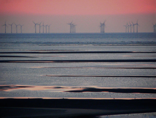 Alternative Energy Beauty In Nature Blåvand Danmark Denmark Electricity  Environment Environmental Conservation Fuel And Power Generation Landscape Northsea Power In Nature Renewable Energy Scenics Sea Sky Summer Evening Sunset Sustainable Resources Water Wind Power Wind Turbine Windmill