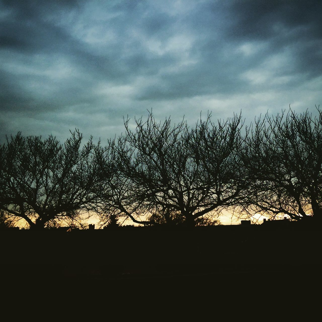 silhouette, sky, tree, nature, beauty in nature, bare tree, tranquility, scenics, cloud - sky, tranquil scene, landscape, no people, outdoors, branch, sunset, day