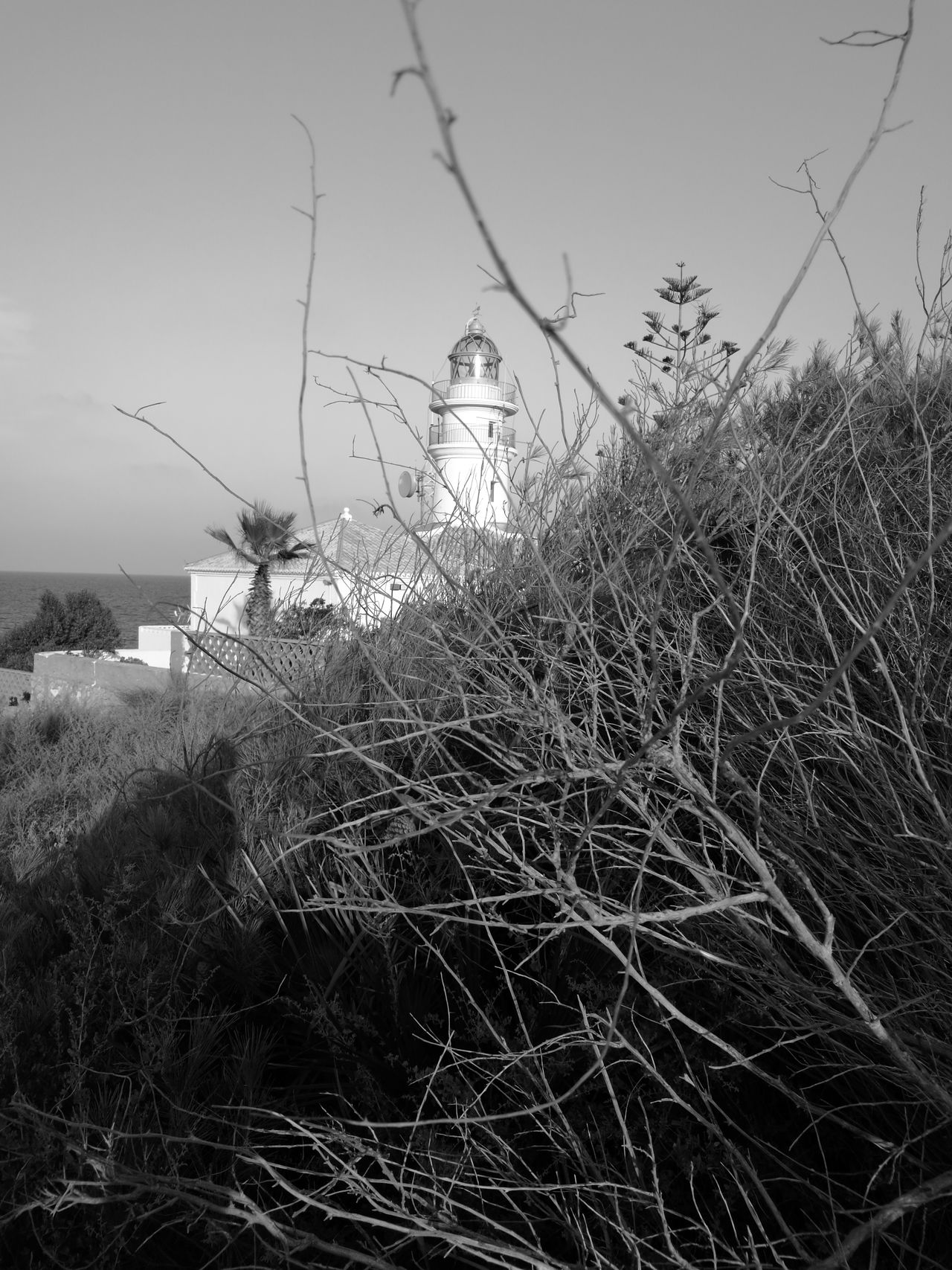 El faro de cullera Faro Cullera Naturaleza Soledad