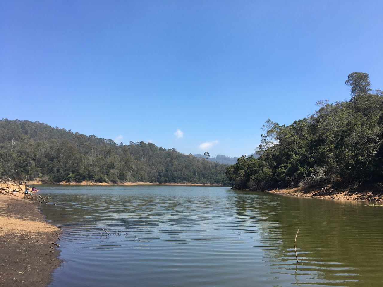 Kodai Treat Beauty In Nature Green Green Green!  Kodaidairies Landscape_photography Nature Gifts No Words Needed Outdoors Pleasant Loneliness
