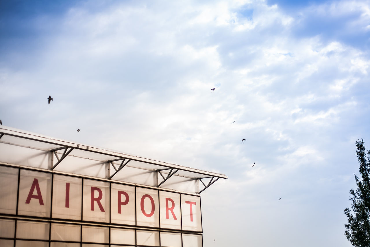 Beautiful stock photos of airport, Avian, Beauty In Nature, Bird, Blue