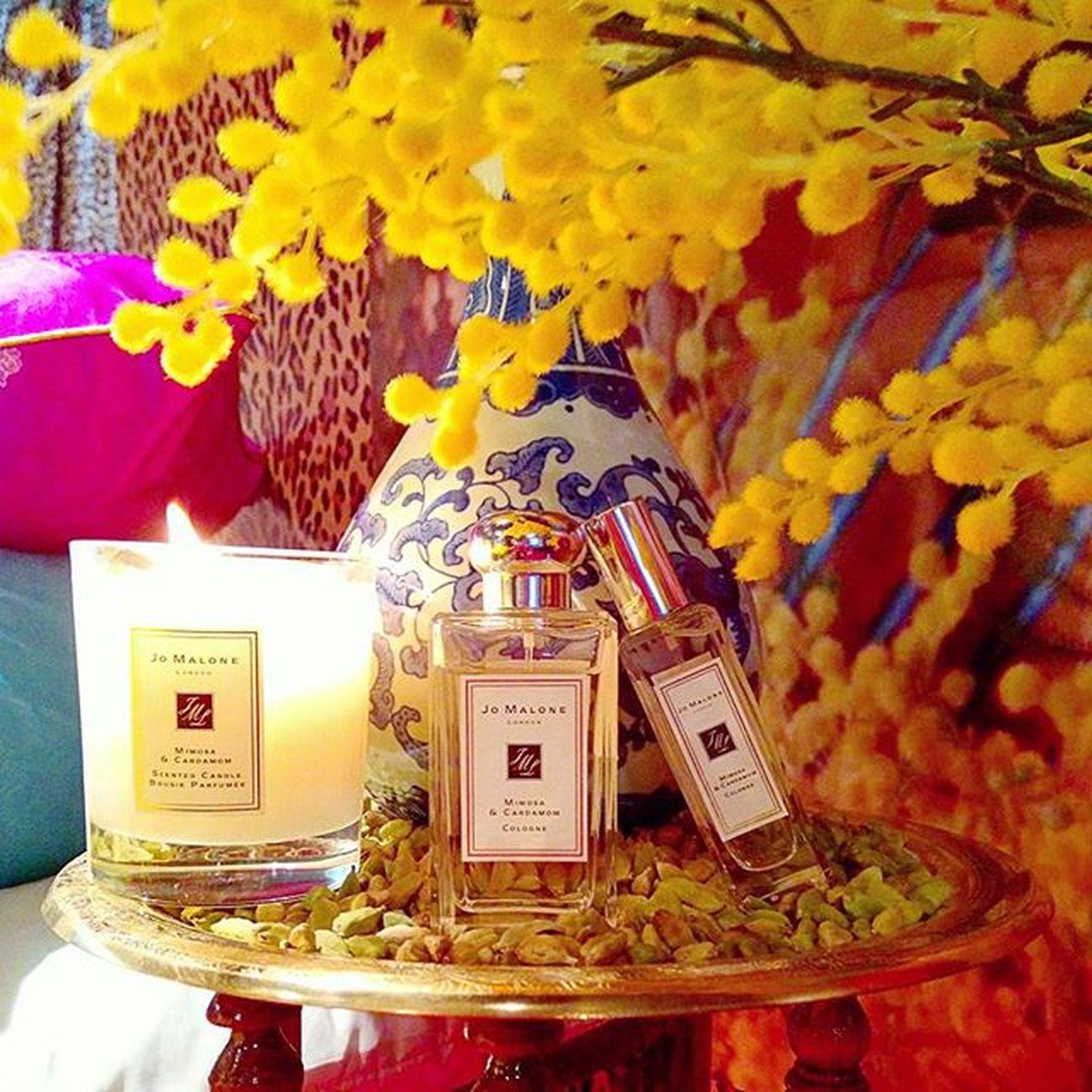十分適合明亮秋光下的香味,是波希米亞式說走就走的灑脫。Jo Malone London Mimosa & Cardamom含羞草與小荳蔻。Jomalonelondon Mimosa Cardamom Newbohemian Bohemian Autumnlight Perfume Mobile01 愛曼達