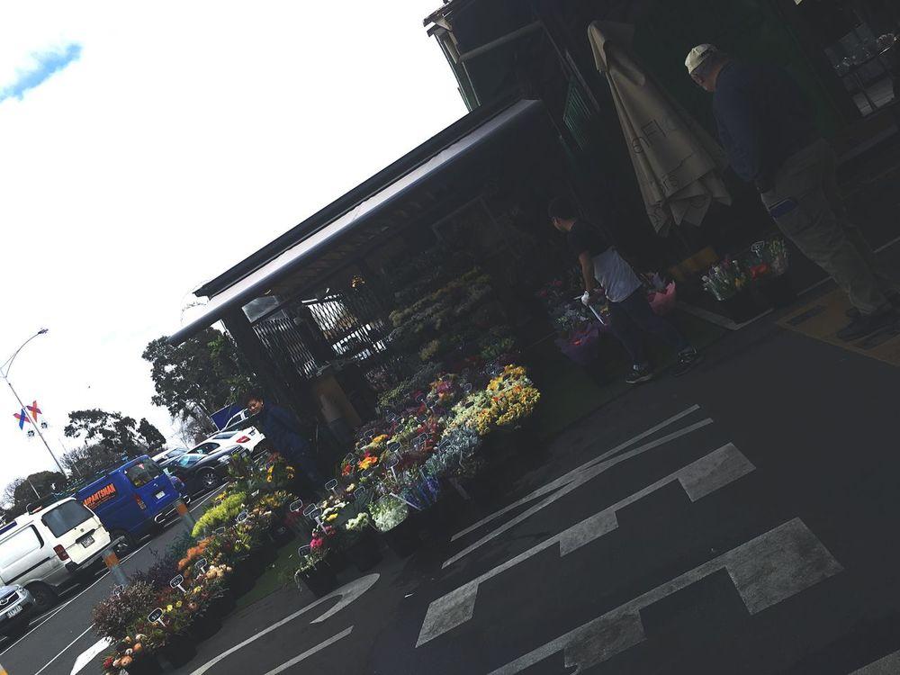 Vic Markets - Melbourne Queen Victoria Building Flowers Flower Shop IPhone SE Plants People Melbourne