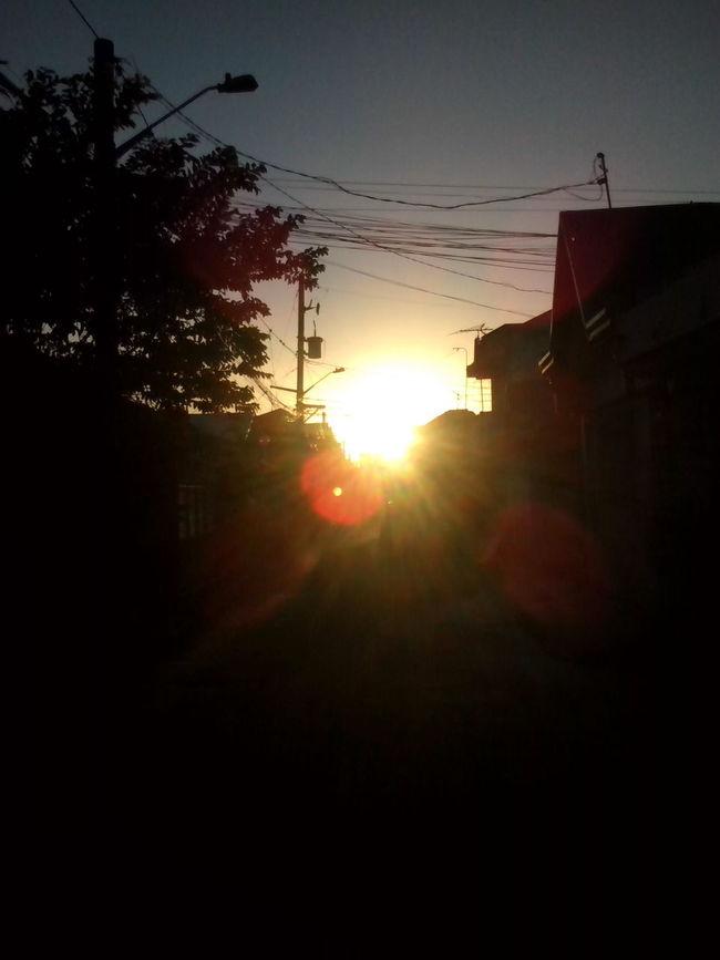Sunset Sillouette Neighborhood
