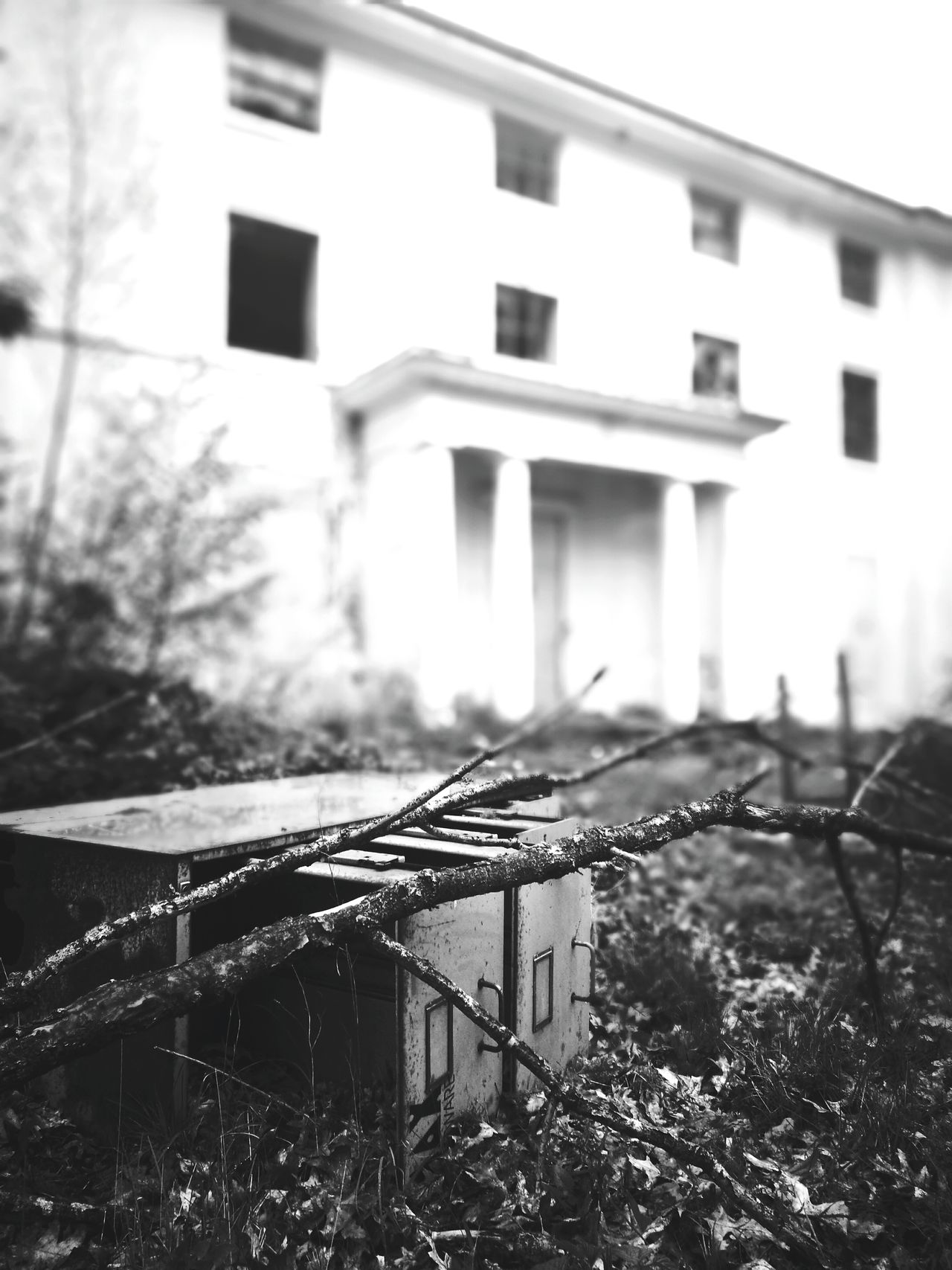 Architecture Mansion Chaos Manor Building Exterior Built Structure Window No People Abandoned Outdoors Old Blackandwhite