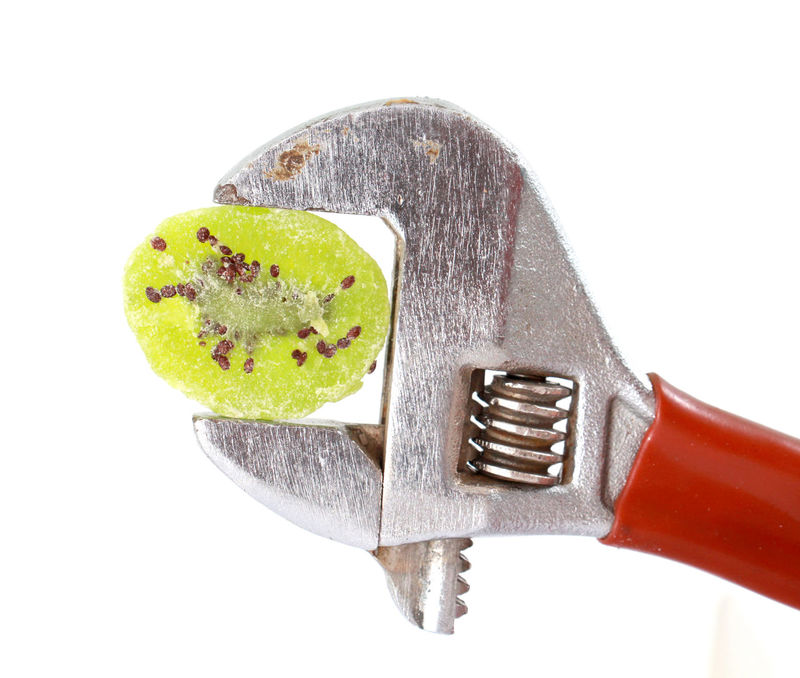 candied kiwi on a pipe wrench Candied Fruit Close-up Day Food Freshness Kiwi Kiwifruit No People Pipe Wrench Pliers Studio Shot White Background