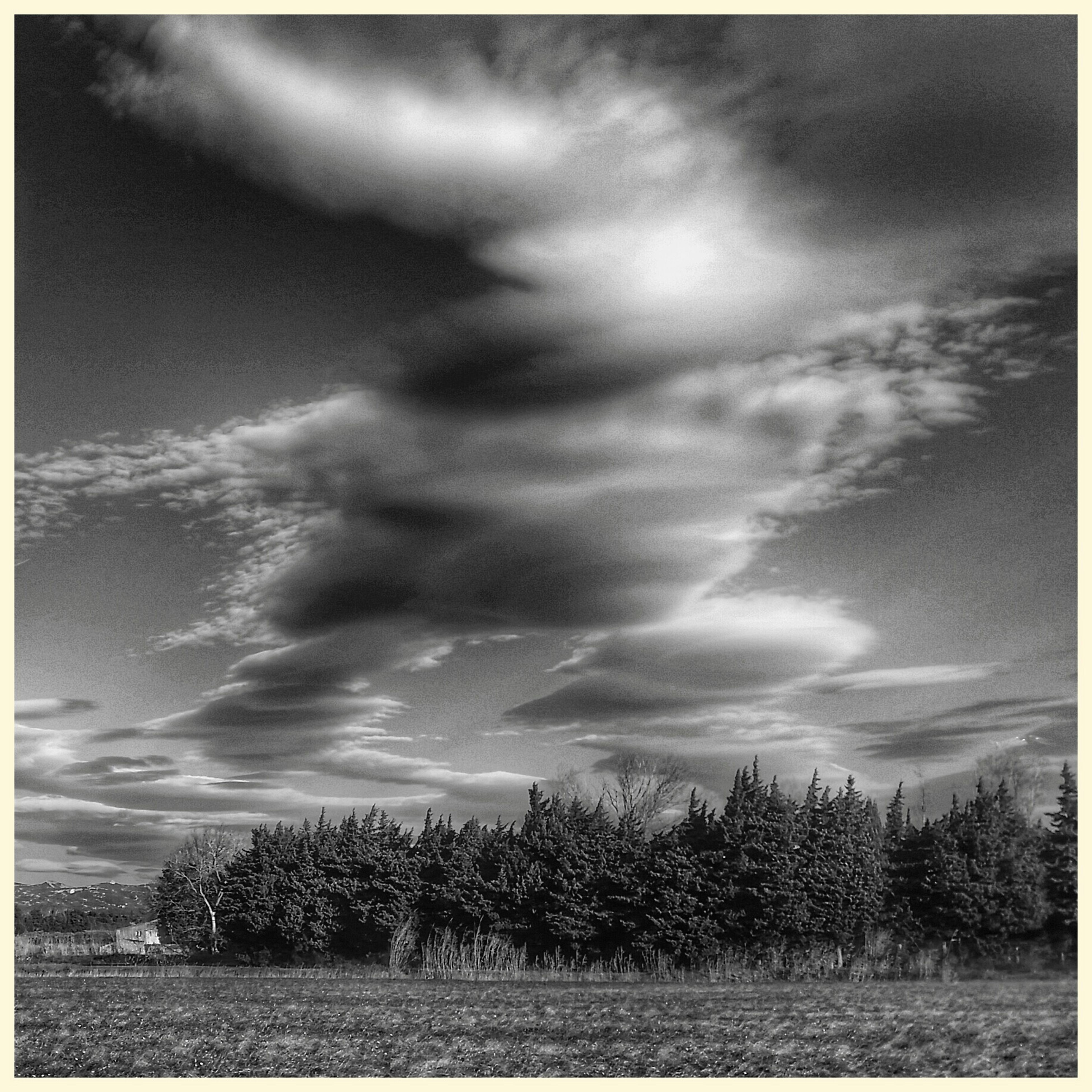transfer print, sky, cloud - sky, auto post production filter, field, cloudy, tranquility, tranquil scene, landscape, grass, nature, beauty in nature, cloud, scenics, tree, growth, rural scene, plant, outdoors, day
