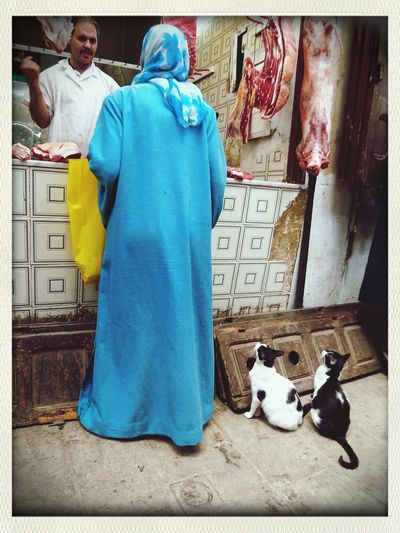 Two little cats Fez Morroco Cats Street Photography Morroco Photo Market