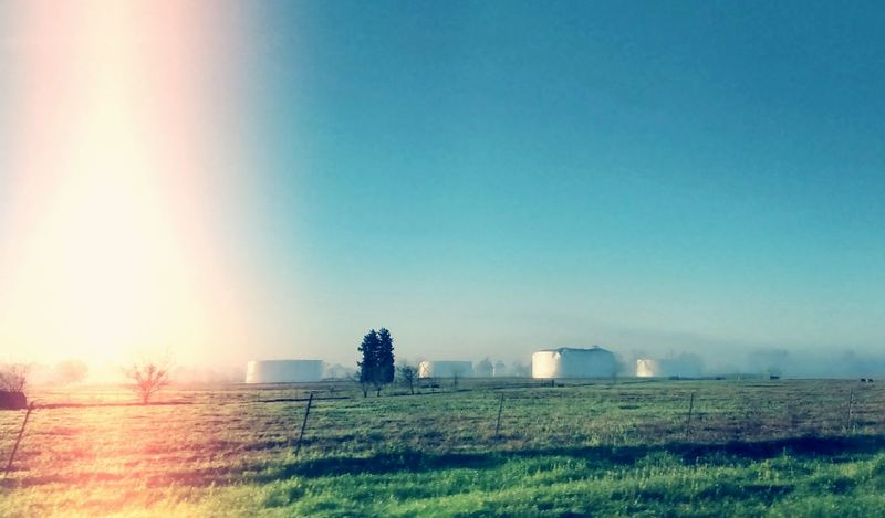 Mobilephotography On The Road Landscape_Collection Country Life Barn Farm Fog Foggy Morning Silo Silos
