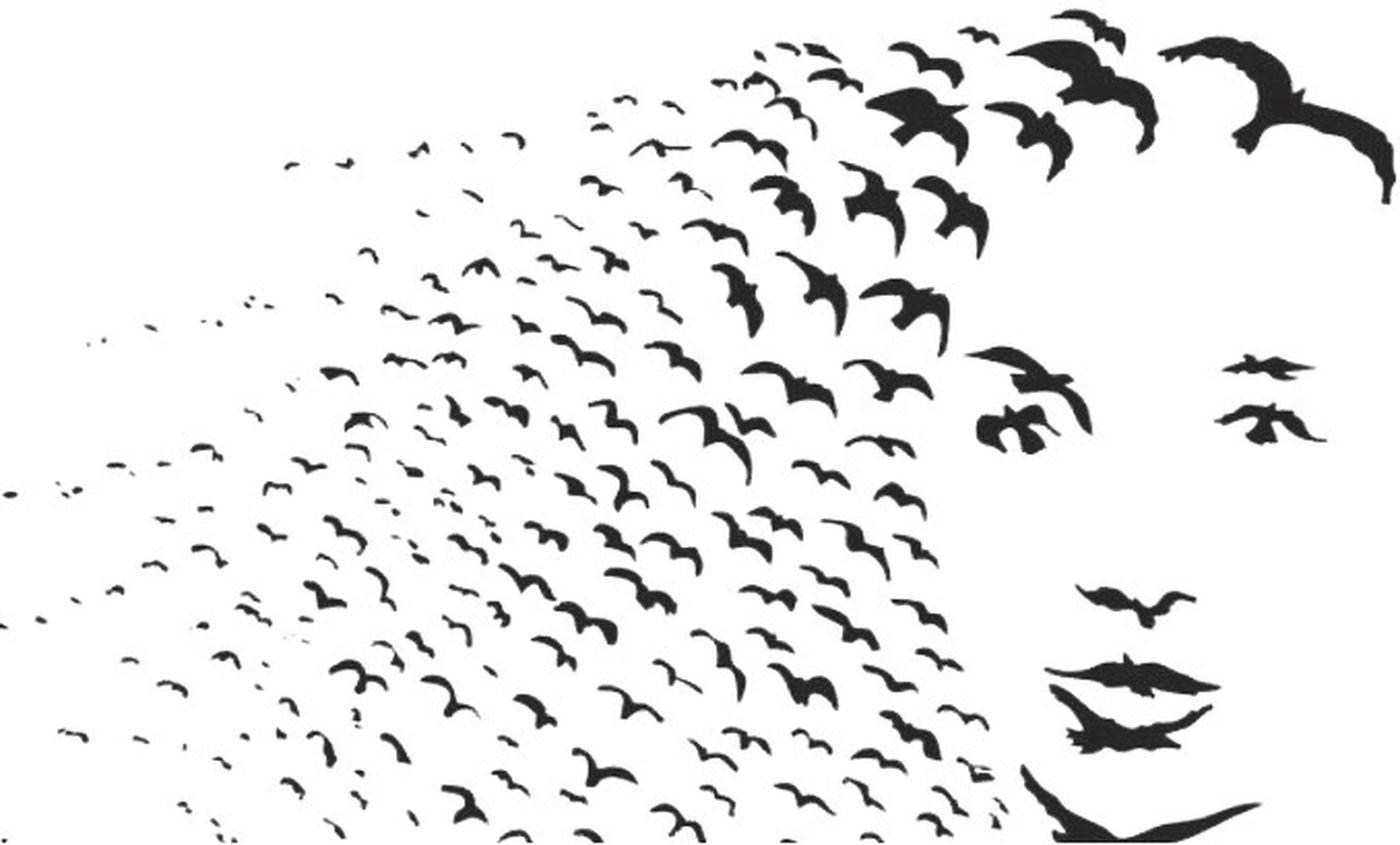 Kuş Olup Gel Birds Bird Photography Birds_collection Insanlar da Birer Kuştur EyeEm Nature Lover EyeEm Http://youtu.be/YYQxIRHgtUY Enjoying Life Hello World Krmz1978 Aşk💞aşk💞aşk IPhoneography 😍😙😙😙😍😍😙😻😻😻