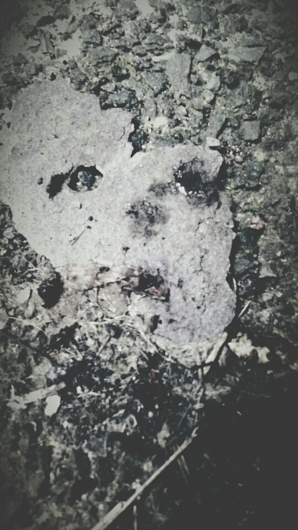 Faces. Faces Faces In Places Stone No People Close-up Nature Gravel Seeing Double Seeing Things Monochrome Scary Scary Face