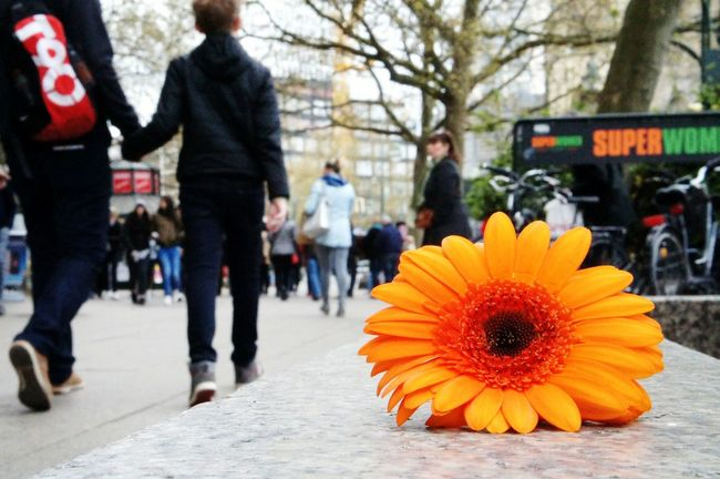 Berlin Love Kurfürstendamm Streetphotography Poeples Flovers Only Flowers People Walking  Street Fashion Streetlove My Smartphone Life From My Point Of View Berlin Streetart Details Details Of Colour Orange Flower Orange Color Live Learn & Shoot: Composition